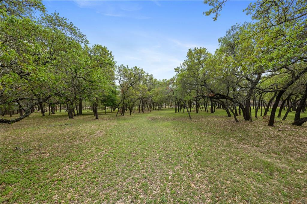 1202 Lone Star DR Property Photo - Cedar Park, TX real estate listing
