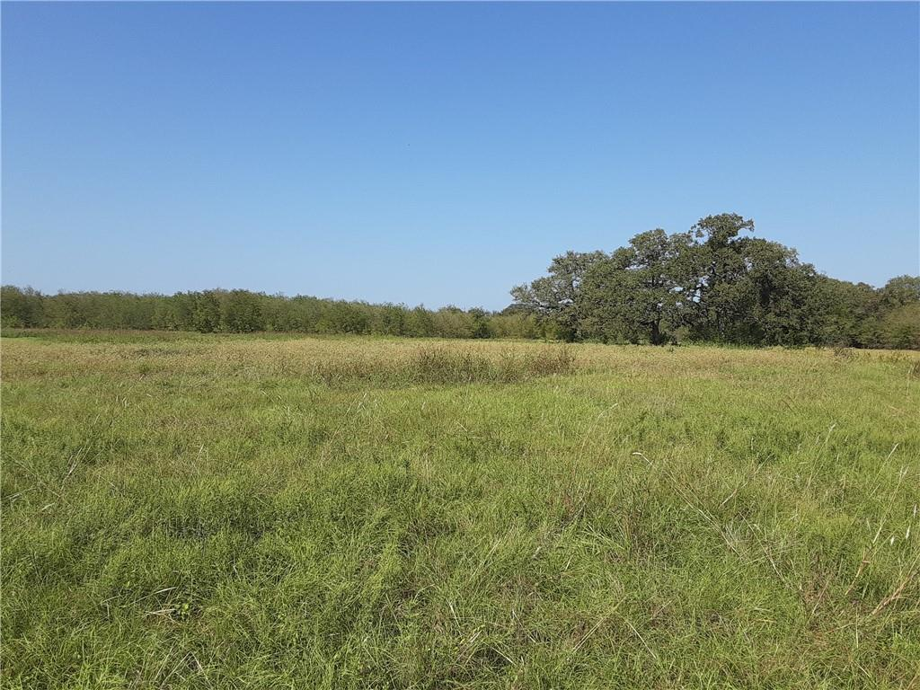 TBD Phillip ST Property Photo - Marlin, TX real estate listing