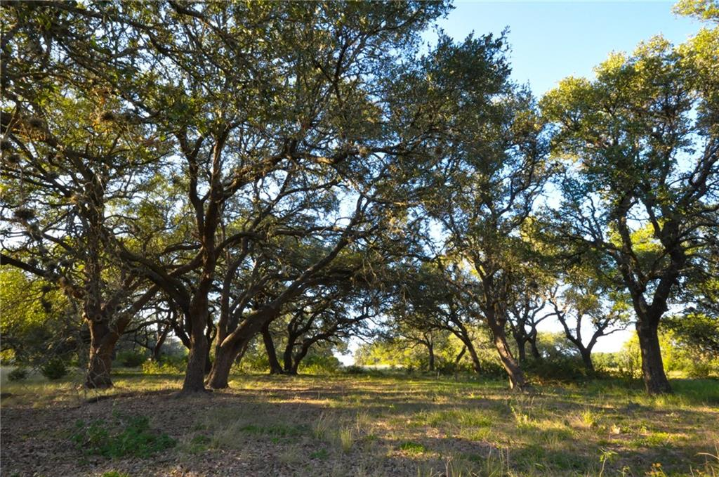 100 Ranch Road 165 Property Photo - Dripping Springs, TX real estate listing