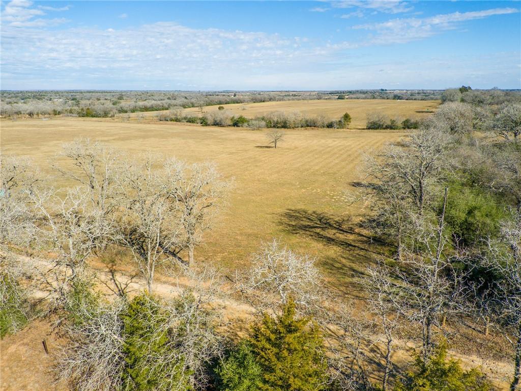 1773 CR 441 Property Photo - Harwood, TX real estate listing