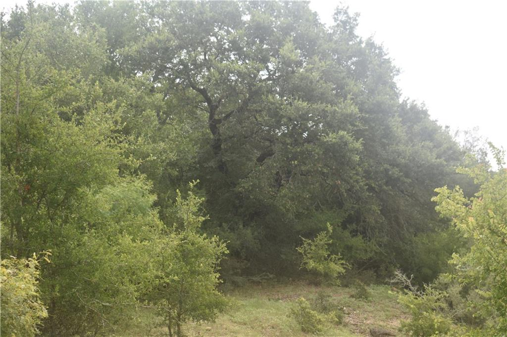 0000 Seawillow RD, Lockhart TX 78644 Property Photo - Lockhart, TX real estate listing