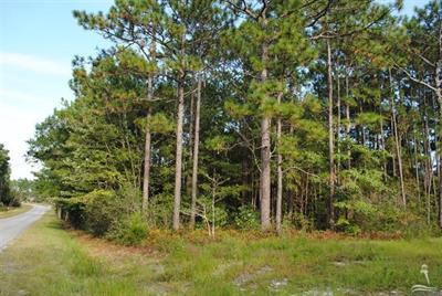 lot 8 Pinehurst RD, Other NC 28461, Other, NC 28461 - Other, NC real estate listing