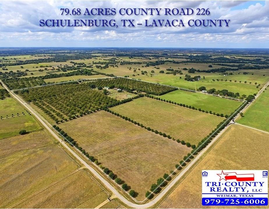 TBD County Road 226 Property Photo - Hallettsville, TX real estate listing