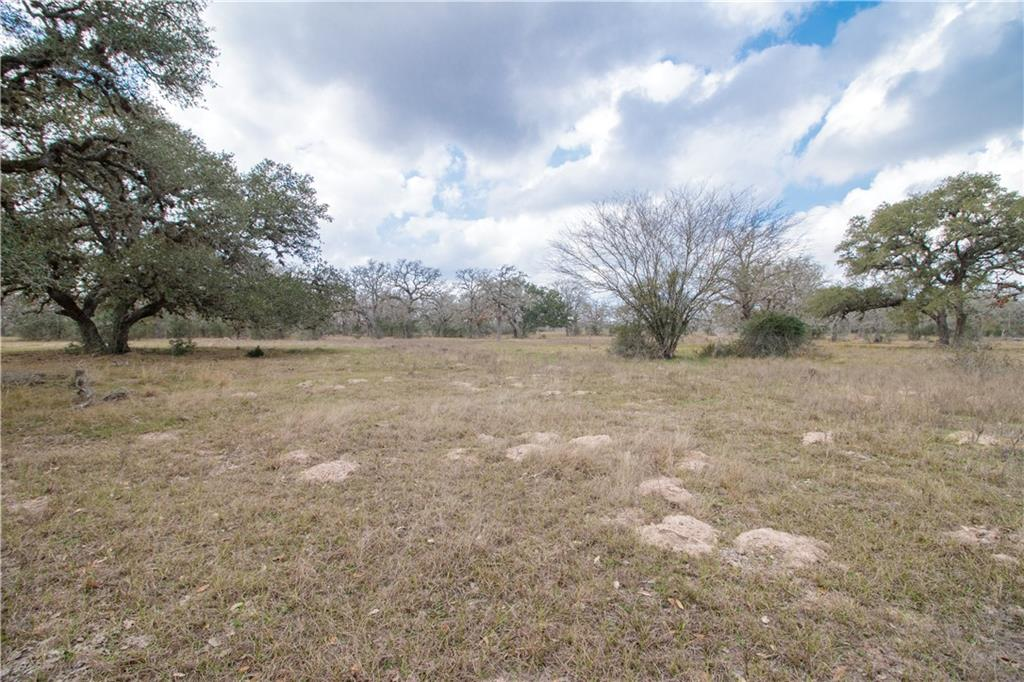 TBD Garrett Road Property Photo - Yoakum, TX real estate listing