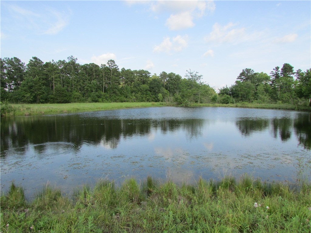 TBD FM 1374, Other TX 77340, Other, TX 77340 - Other, TX real estate listing