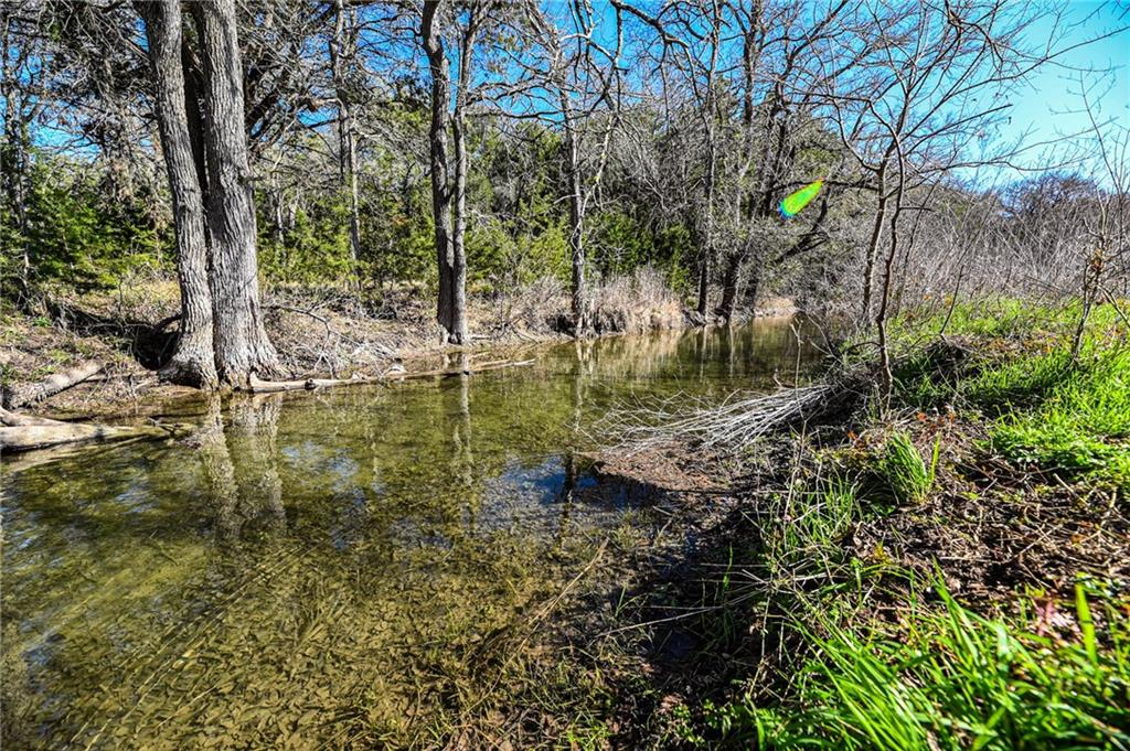 970 Mail Route RD, Fischer TX 78623 Property Photo - Fischer, TX real estate listing