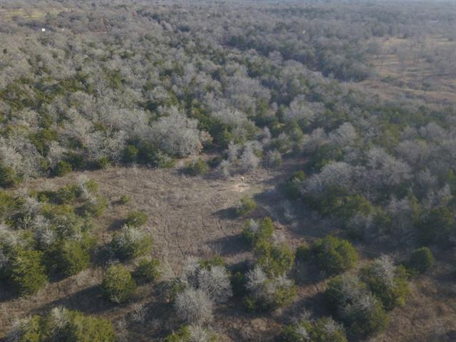 000 FM 20, Cedar Creek TX 78612, Cedar Creek, TX 78612 - Cedar Creek, TX real estate listing