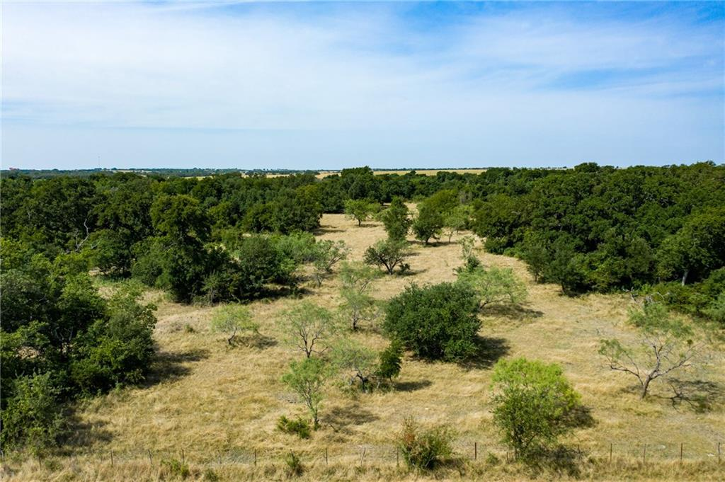 6024 ( 25 ac ) County Road 211, Florence TX 76527 Property Photo - Florence, TX real estate listing