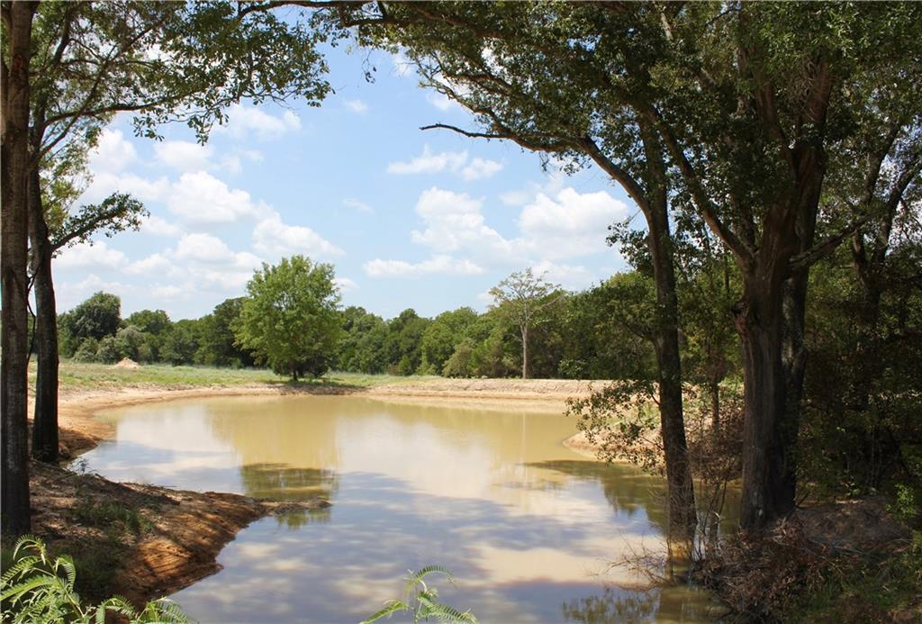 000 County Road 411, Lexington TX 78947 Property Photo - Lexington, TX real estate listing