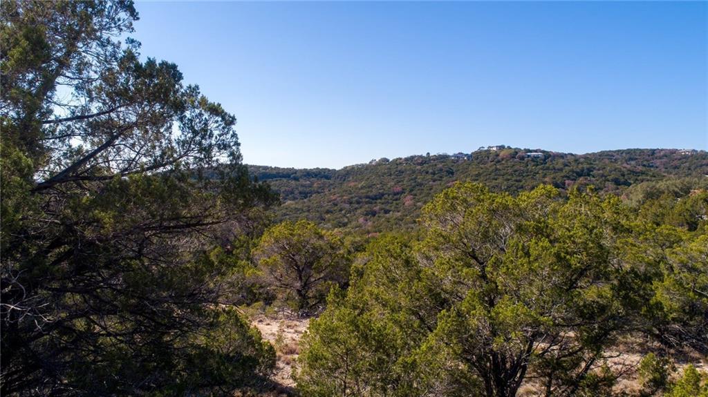 18801 W Reed Park RD Property Photo - Jonestown, TX real estate listing