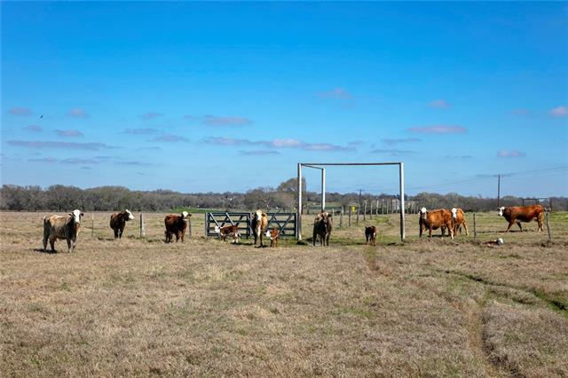 TBD CR 205, Other TX 77836, Other, TX 77836 - Other, TX real estate listing