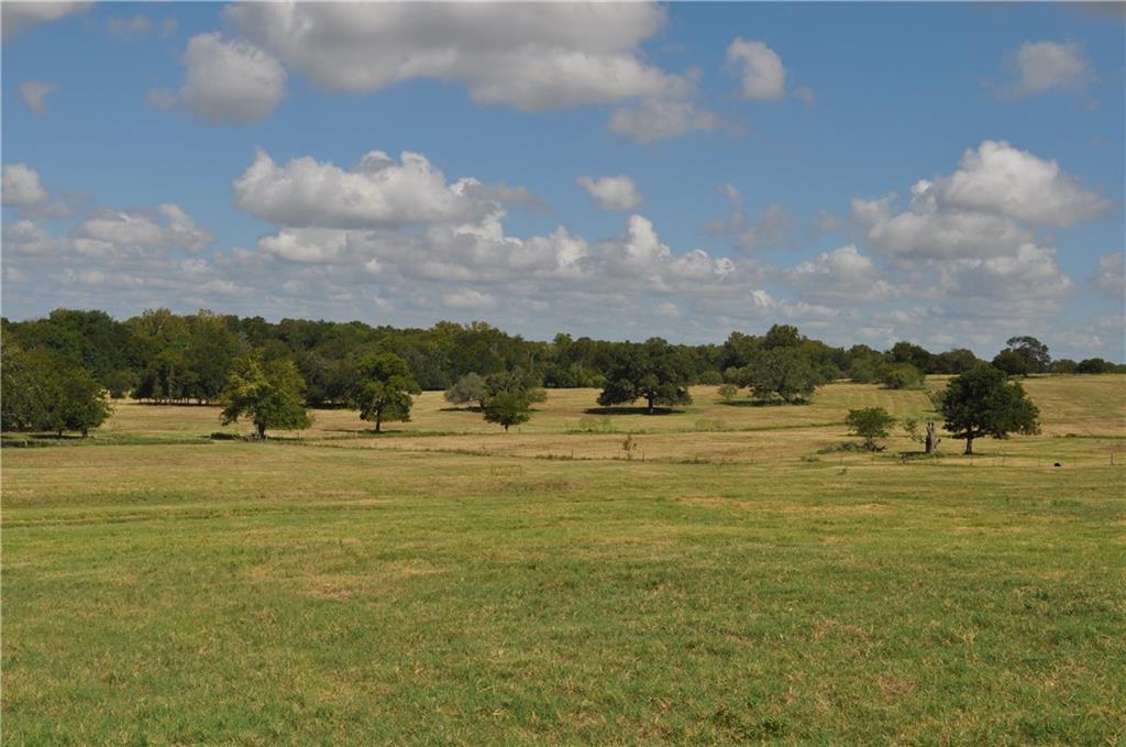 3614 Hwy 77 S Property Photo - Schulenburg, TX real estate listing
