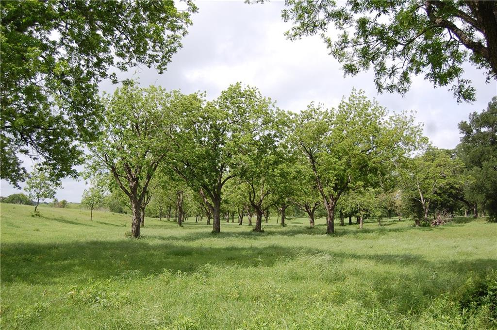 Tract 6 County Road 455, Thorndale TX 76577 Property Photo - Thorndale, TX real estate listing