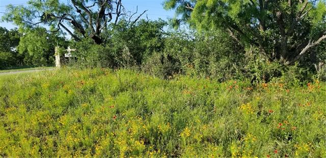 0 Golden Beach DR, Buchanan Dam TX 78609, Buchanan Dam, TX 78609 - Buchanan Dam, TX real estate listing