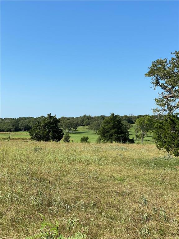 00 Peach Crk RD # B Property Photo - Waelder, TX real estate listing