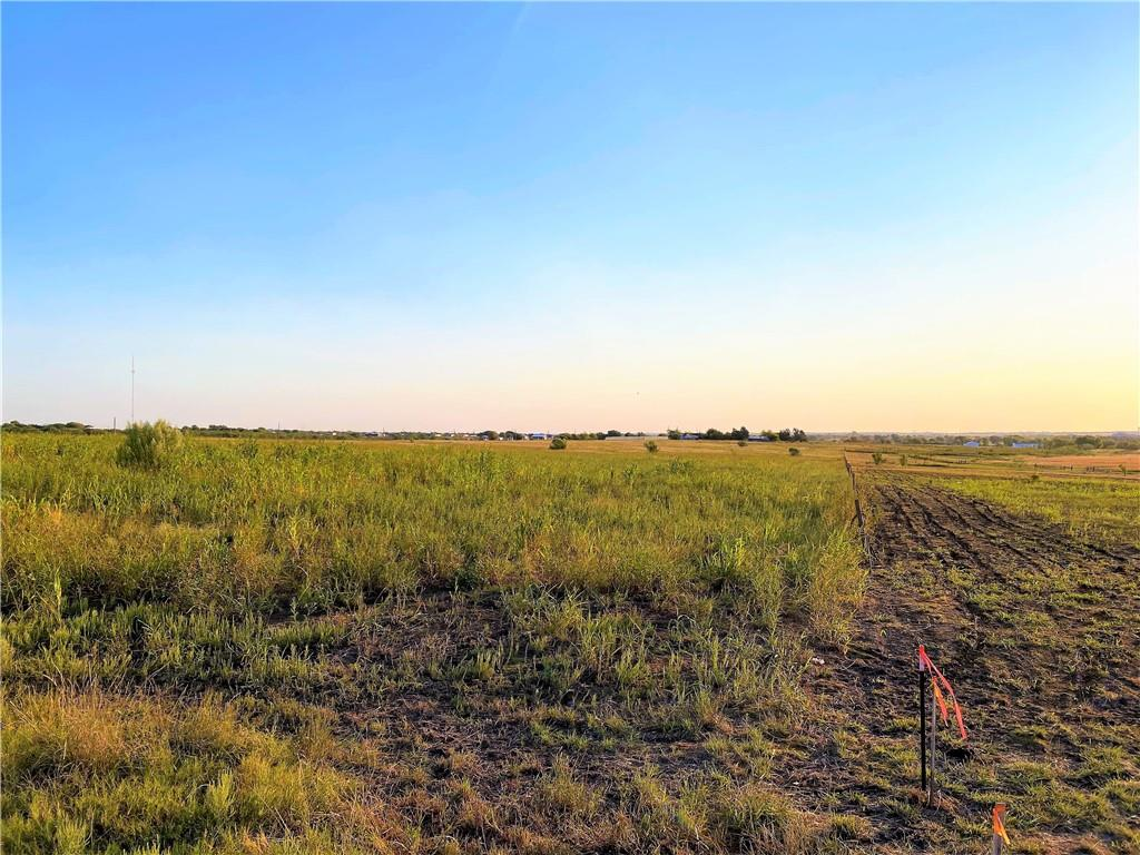367 County Road 461 Lot 17 Property Photo - Coupland, TX real estate listing