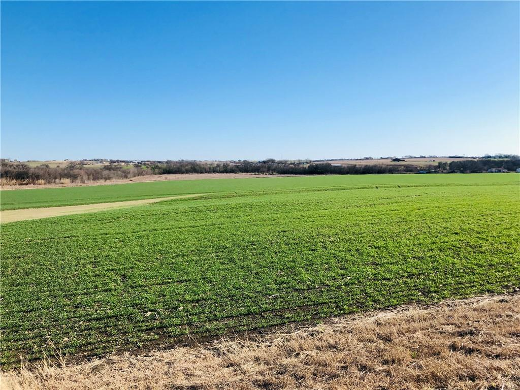 TBD County Rd 424 Property Photo - Thrall, TX real estate listing