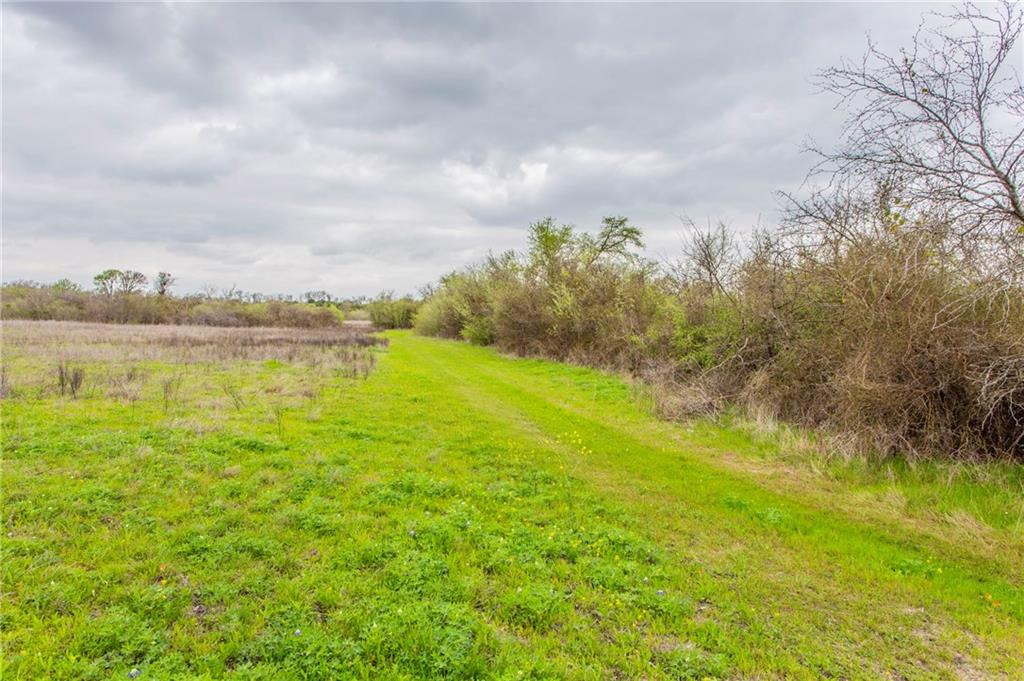 2293 County Road 105, Hutto TX 78634 Property Photo