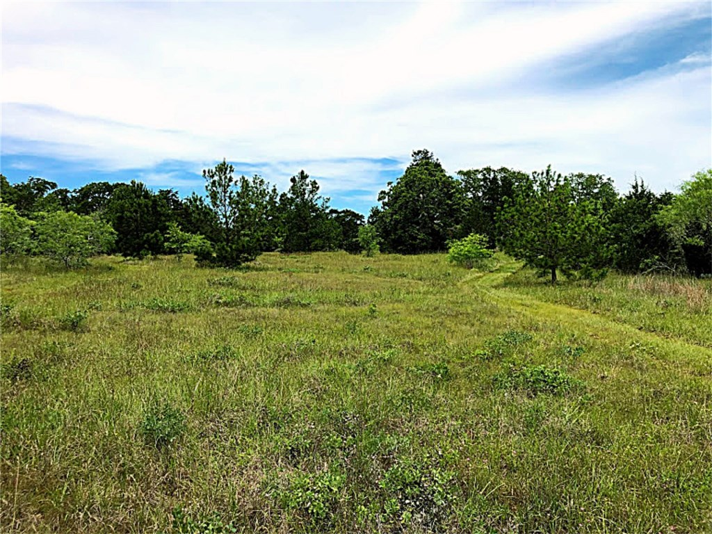 1028 Antioch RD, Paige TX 78659 Property Photo - Paige, TX real estate listing