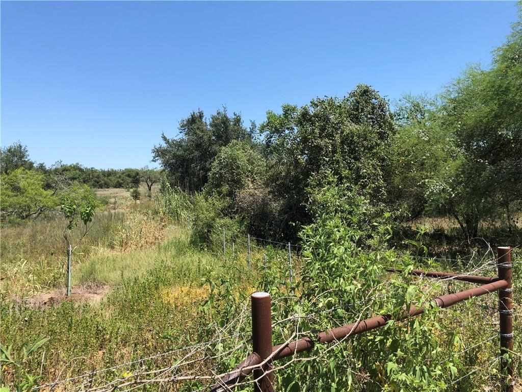 TBD County Rd 216 Property Photo - Smiley, TX real estate listing