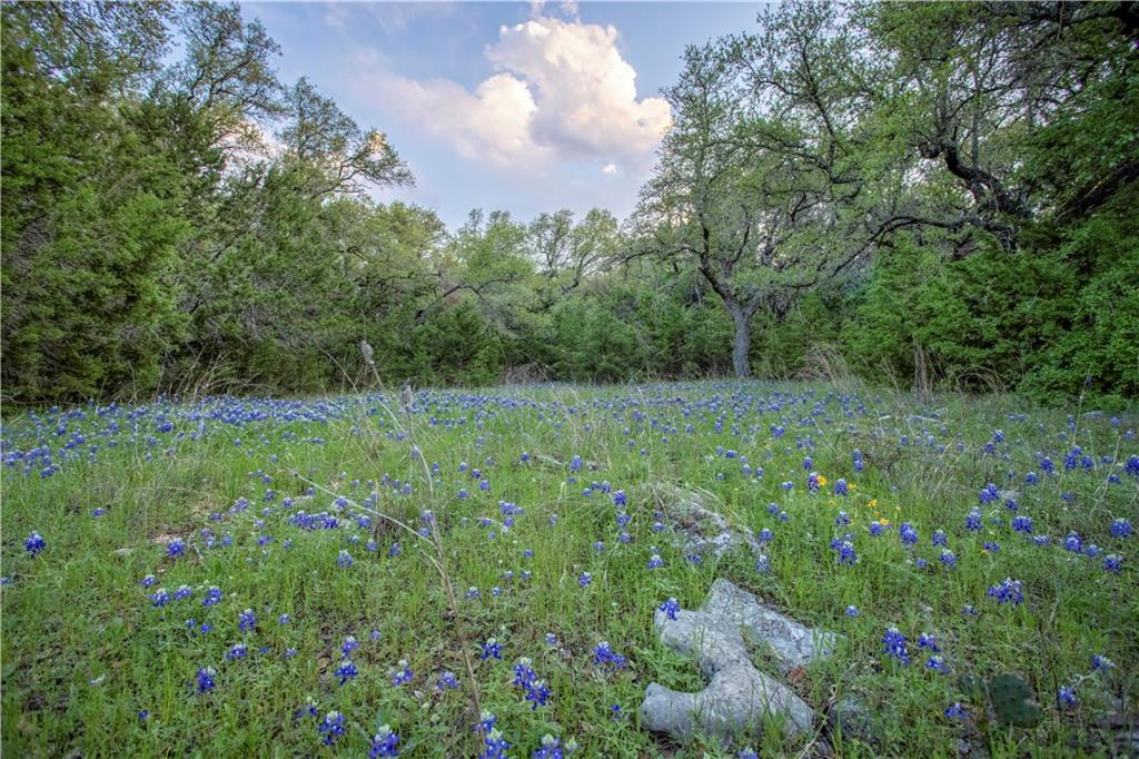 500 Spears Ranch RD Property Photo - Jarrell, TX real estate listing