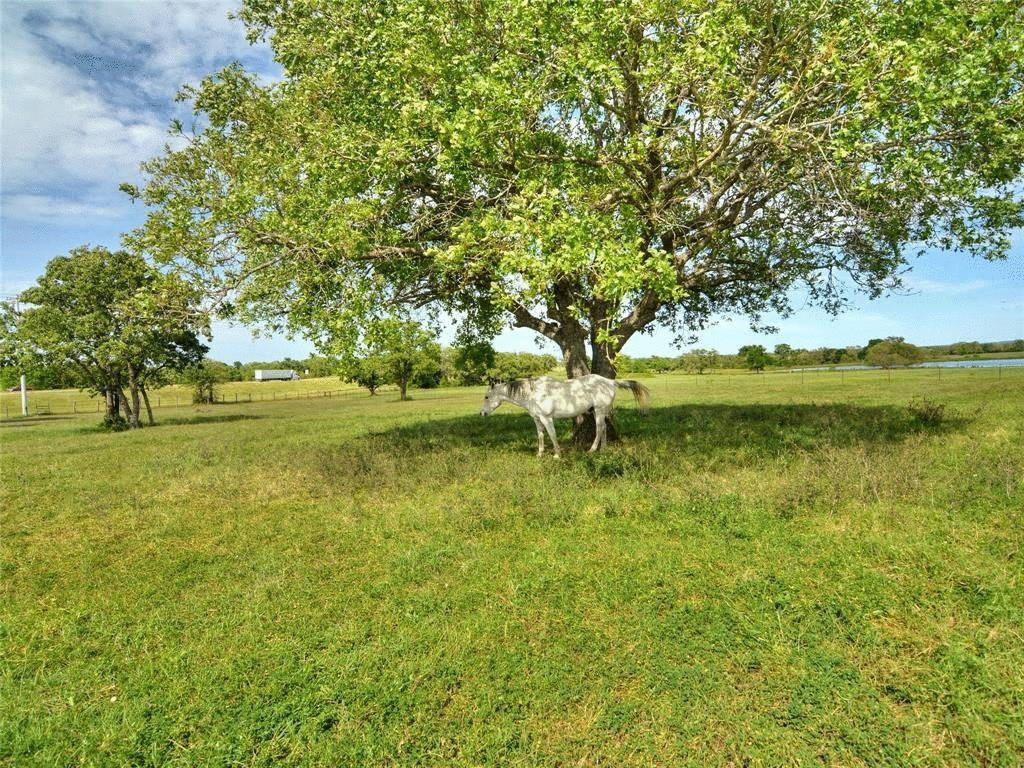 760 CR 413 A Tract 3 Property Photo - Waelder, TX real estate listing