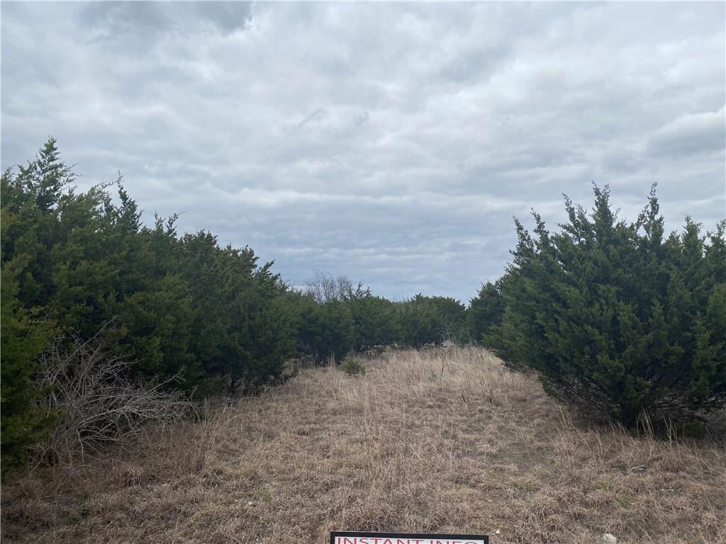 000 Avila LN Property Photo - Briggs, TX real estate listing