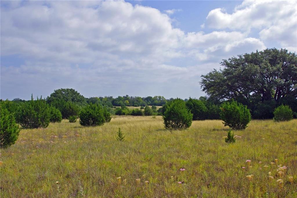 000 FM 2657, Briggs TX 78608 Property Photo - Briggs, TX real estate listing