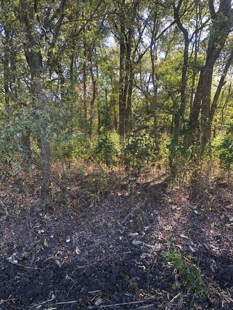 0 County Rd 405 Property Photo - Taylor, TX real estate listing