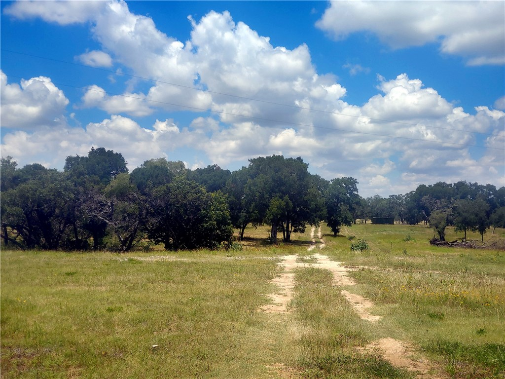 3370 County Road 236, Liberty Hill TX 78642 Property Photo - Liberty Hill, TX real estate listing