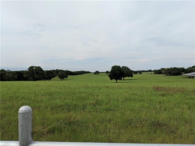 466 County Road 280, Cameron TX 76520 Property Photo - Cameron, TX real estate listing