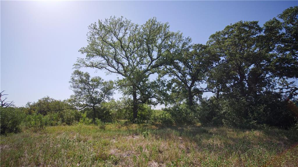 esmt off of CR 353, Gause TX 77857 Property Photo - Gause, TX real estate listing