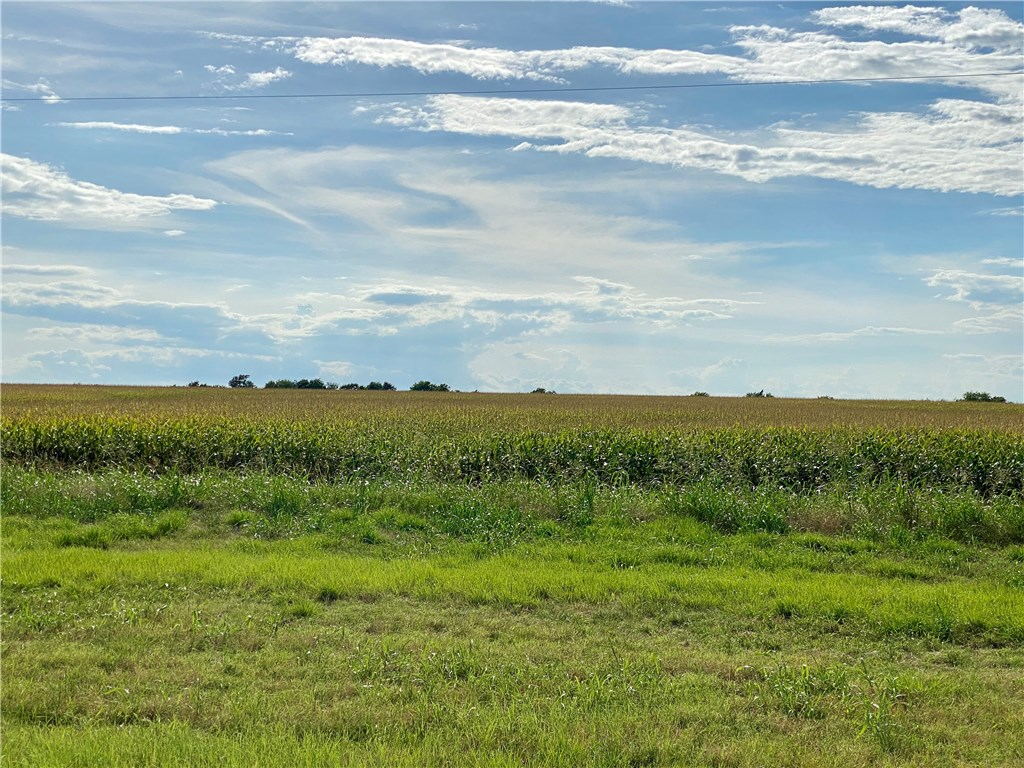 TBD N F M Road 973, Coupland TX 78615 Property Photo - Coupland, TX real estate listing