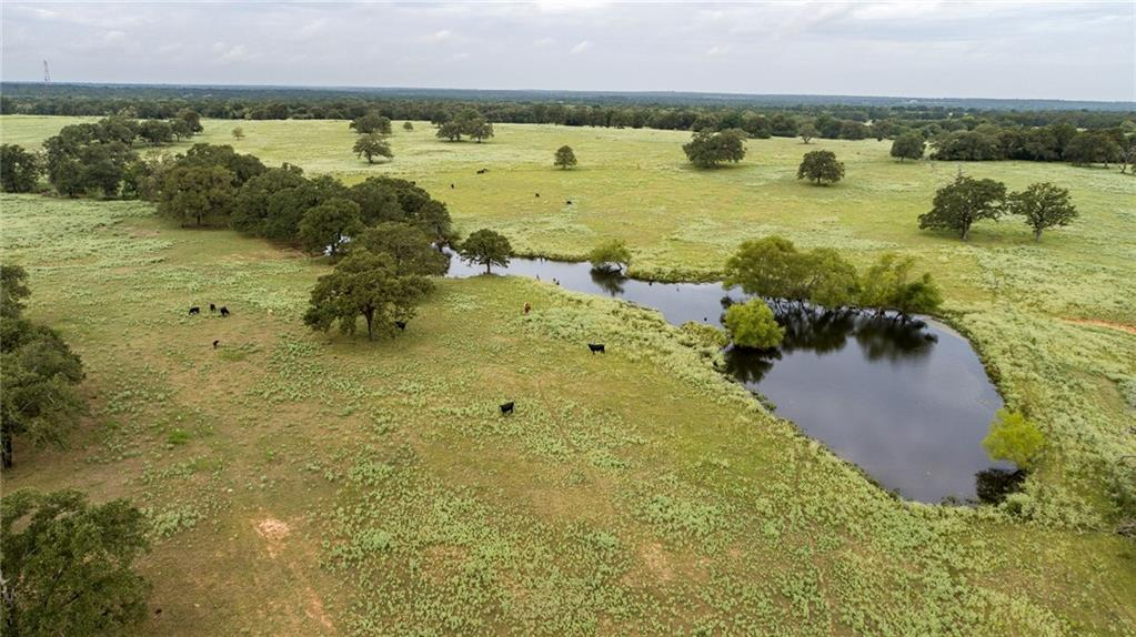 1085 County Road 380 RD Property Photo - Milano, TX real estate listing