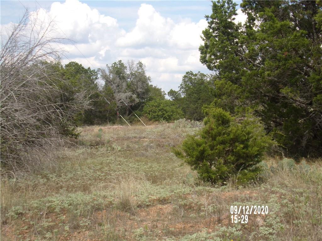 Lot 1002 Pristine Pass Property Photo - Buchanan Dam, TX real estate listing