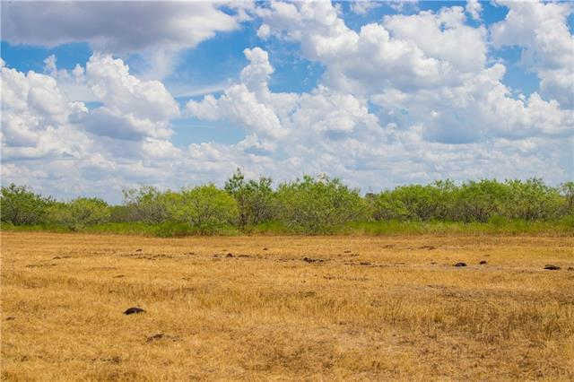 TBD (99.5 Acres) County Road 426, Dime Box TX 77853, Dime Box, TX 77853 - Dime Box, TX real estate listing