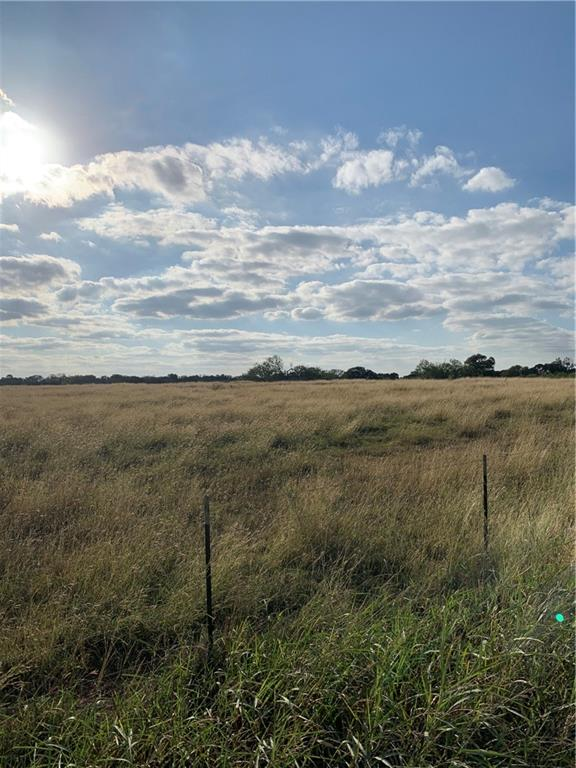 1270 Bugtussle LN Property Photo - Luling, TX real estate listing