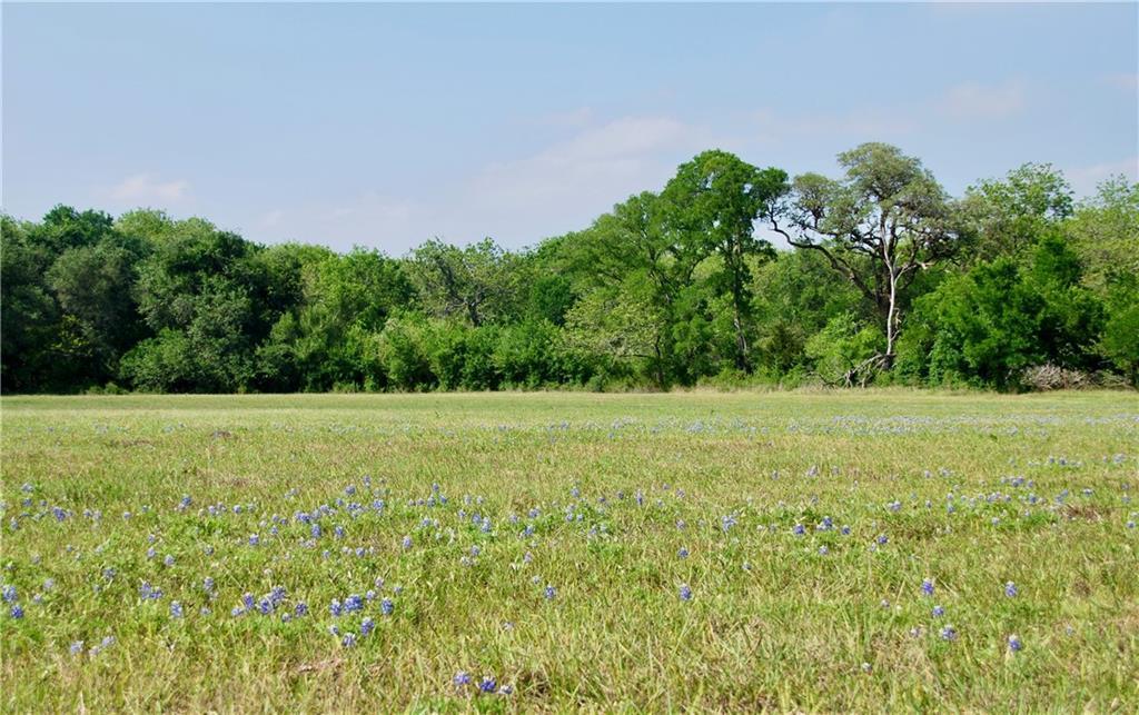 188 CR 257A Property Photo - Moulton, TX real estate listing