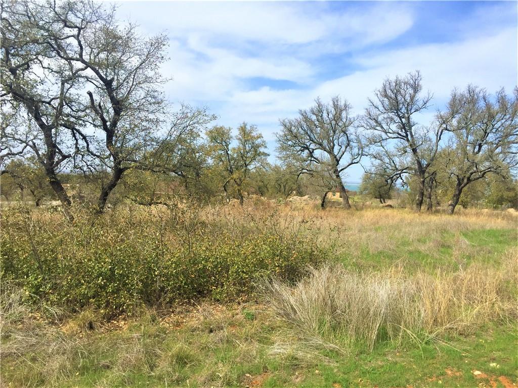 Lot 48 Pristine PASS Property Photo - Buchanan Dam, TX real estate listing