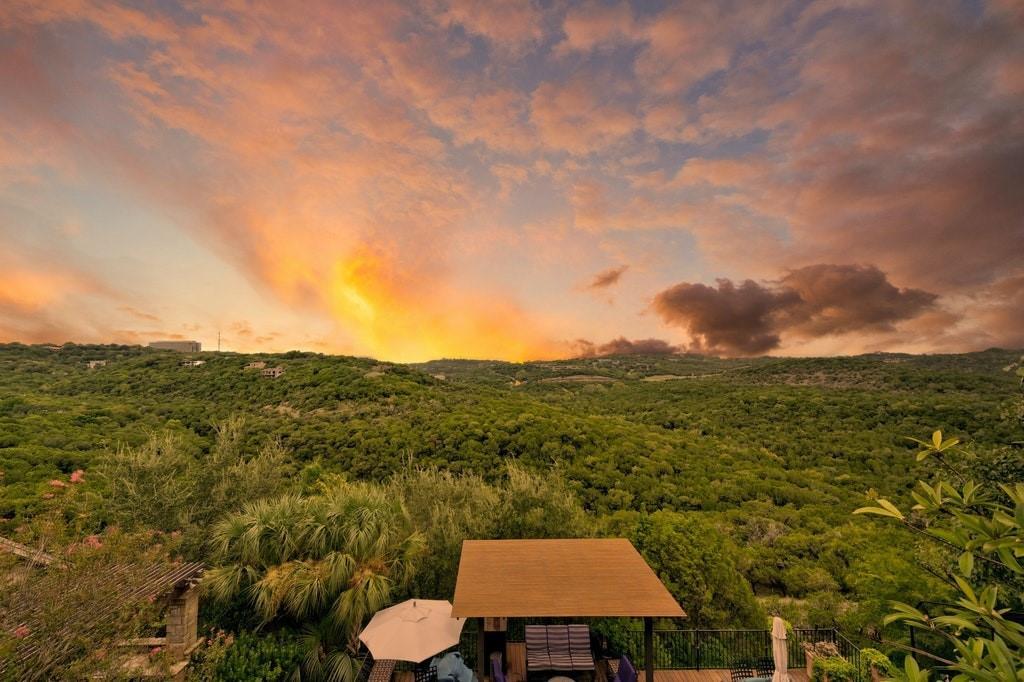 1421 Circle Ridge DR Property Photo - West Lake Hills, TX real estate listing