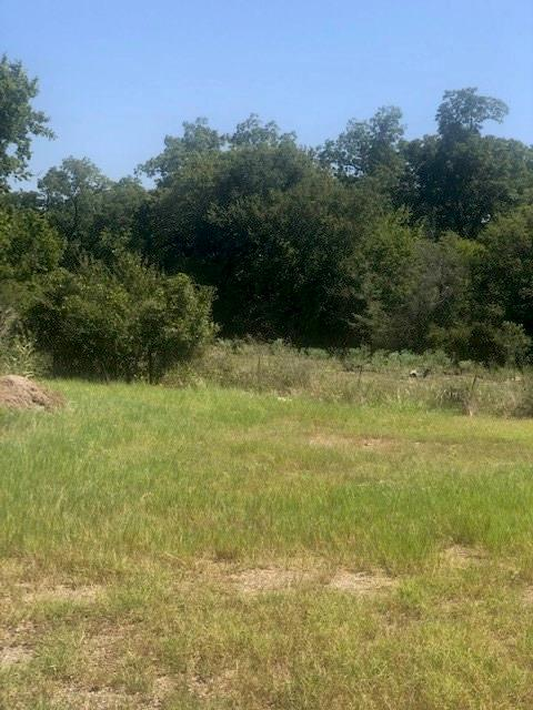 8576 N US Highway 77 Property Photo - Lexington, TX real estate listing