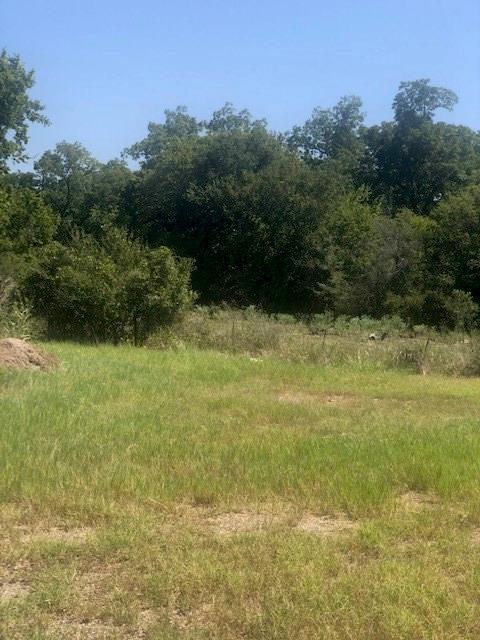8576 N US Highway 77 Property Photo - Lexington, TX real estate listing