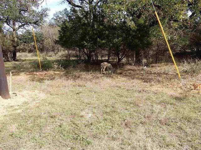 Lot 207 Pecan LN, Cottonwood Shores TX 78657, Cottonwood Shores, TX 78657 - Cottonwood Shores, TX real estate listing