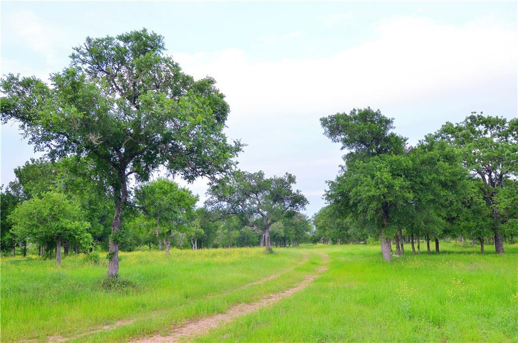 TBD Upper Elgin River Road, Elgin TX 78621, Elgin, TX 78621 - Elgin, TX real estate listing