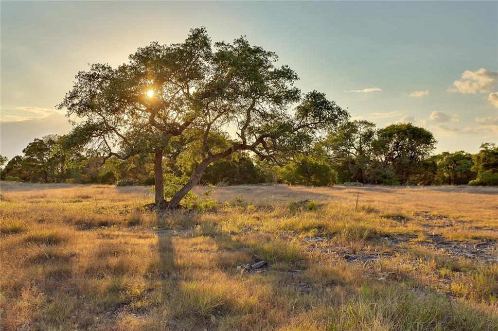 Ranch #3 Liberty Ranch RD, Austin TX 78610 Property Photo - Austin, TX real estate listing