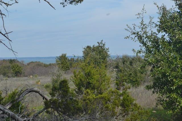 Lot 66 Pristine PASS, Buchanan Dam TX 78609 Property Photo - Buchanan Dam, TX real estate listing