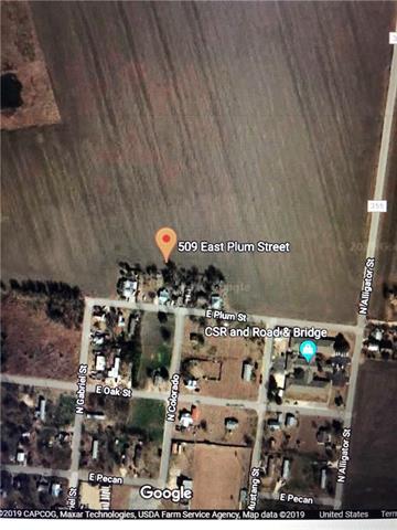 509 Plum ST, Granger TX 76530 Property Photo - Granger, TX real estate listing