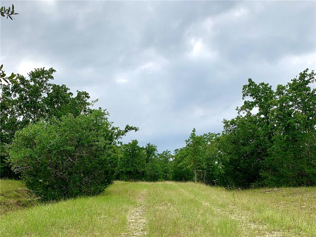 1110 Fm 154 Property Photo - Muldoon, TX real estate listing
