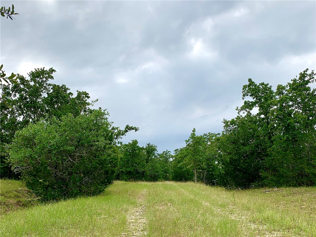 1110 Fm 154, Muldoon TX 78949 Property Photo - Muldoon, TX real estate listing