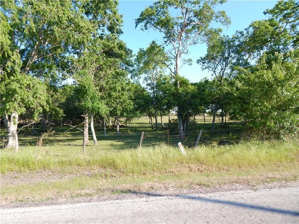 TBD S BATTLE RD Property Photo - Kendleton, TX real estate listing